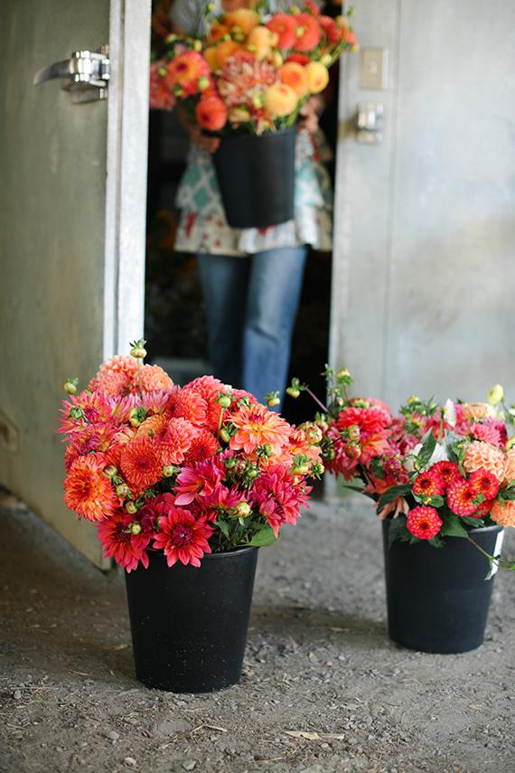 seattle-florist-floret-14
