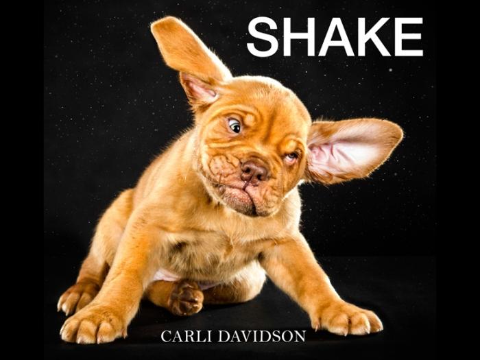 Shake-cover-102213-780
